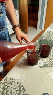 Anna's mom's homemade Kombucha was amazing! Made using homegrown berries too!