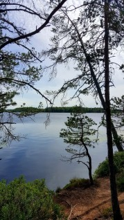 A beautiful lake, surrounded by huge forestry in the National Park